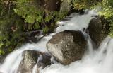 Tanaya River