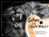 Safari in Contrast