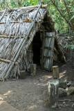Habitat primitif en Amazonie ? Non, sur l'île de la Réunion !
