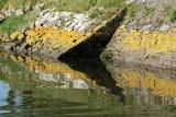Sur le golfe du Morbihan en semi-rigide - MK3_9338 DxO Pbase.jpg