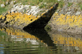Sur le golfe du Morbihan en semi-rigide - MK3_9339 DxO Pbase.jpg