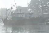 Sur le golfe du Morbihan en semi-rigide - MK3_9374 DxO Pbase 2.jpg