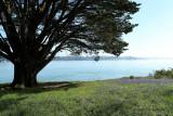Sur le golfe du Morbihan en semi-rigide - MK3_9459 DxO Pbase.jpg