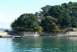 Sur le golfe du Morbihan en semi-rigide - MK3_9484 DxO Pbase.jpg