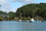 Sur le golfe du Morbihan en semi-rigide - MK3_9510 DxO Pbase.jpg
