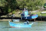 Sur le golfe du Morbihan en semi-rigide - MK3_9513 DxO Pbase.jpg