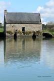 Sur le golfe du Morbihan en semi-rigide - MK3_9520 DxO Pbase.jpg