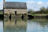Sur le golfe du Morbihan en semi-rigide - MK3_9525 DxO Pbase.jpg