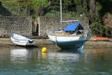 Sur le golfe du Morbihan en semi-rigide - MK3_9564 DxO Pbase.jpg
