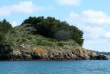 Sur le golfe du Morbihan en semi-rigide - MK3_9589 DxO Pbase.jpg