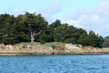 Sur le golfe du Morbihan en semi-rigide - MK3_9594 DxO Pbase.jpg