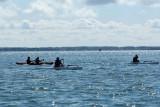 Sur le golfe du Morbihan en semi-rigide - MK3_9599 DxO Pbase.jpg