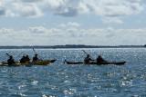 Sur le golfe du Morbihan en semi-rigide - MK3_9608 DxO Pbase.jpg