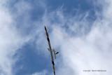 574 Skyshow 2009 - MK3_2321 DxO web.jpg