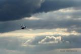 855 Skyshow 2009 - MK3_2600 DxO web.jpg