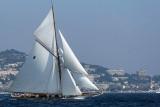 549 Regates Royales de Cannes Trophee Panerai 2009 - MK3_4014 DxO pbase.jpg