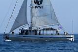 2731 Regates Royales de Cannes Trophee Panerai 2009 - MK3_5762 DxO pbase.jpg