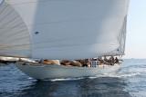 3140 Regates Royales de Cannes Trophee Panerai 2009 - IMG_8953 DxO pbase.jpg