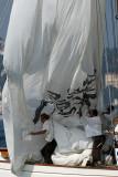 1660 Regates Royales de Cannes Trophee Panerai 2009 - MK3_4874 DxO pbase.jpg