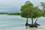Mauritius island - On the east coast - A la découverte de la côte Est de l'île