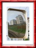 Coquelicots des villes... à la gare de la Garenne-colombes