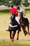 North Scottsdale Polo Club