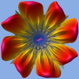 Julia flower 1_23