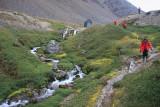 Approaching Grytviken