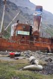 Wreck on Grytviken beach
