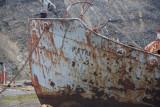 Wreck of the Petrel, Grytviken beach