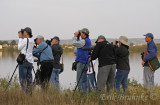Birders... part of the group of 14 birders that attended the first fall Duluth Audubon bird hike!