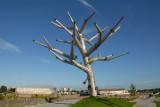 L'arbre empathique