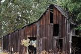 Old Barn #4