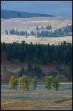 WM---2008-09-18--1759--Yellowstone---Alain-Trinckvel.jpg