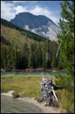 WM---2008-09-18--0547--Yellowstone---Alain-Trinckvel.jpg