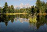 WM---2008-09-18--0394--Yellowstone---Alain-Trinckvel.jpg