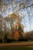 W - 2009-11-15-0375-Versailles-Alain Trinckvel.jpg