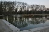 W - 2009-02-01 -0005- Versailles - Alain Trinckvel.jpg