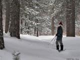 Wanda Snowshoeing 12_27_08.jpg