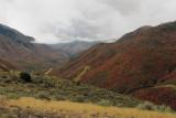 Payson Canyon 10_05_10.jpg