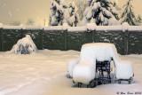 First Day of Winter 2010.jpg