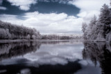 Northwood Meadows Infrared