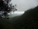 Morans Falls Valley.JPG