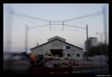 Princes Wharf - No1 Shed