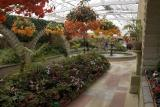 Botanical Garden glasshouse