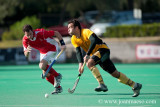 HOCKEY TEMPORADA 2010-2011