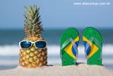 abacaxi e chinelinho do Brasil 8879.jpg