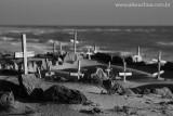 Cemit'rio marinho da praia de pedras compridas, Icarai de Amontada, Amontada, Ceara, 5322, 20100626.jpg