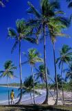 Praia da Cueira, Ilha de Boipeba
