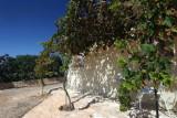Formentera9-2009_067.jpg